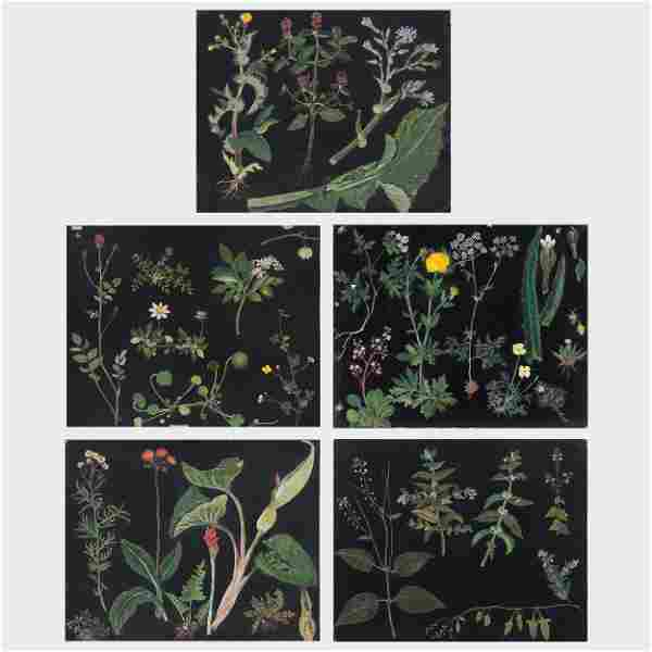 English School: Five Botanical Collages