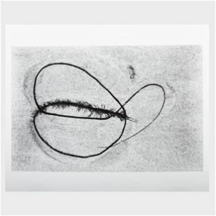 Aaron Siskind (1903-1991): Seaweed 6