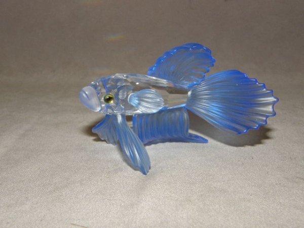 9002: SWAROVSKI CRYSTAL BETA FISH WITH BOX