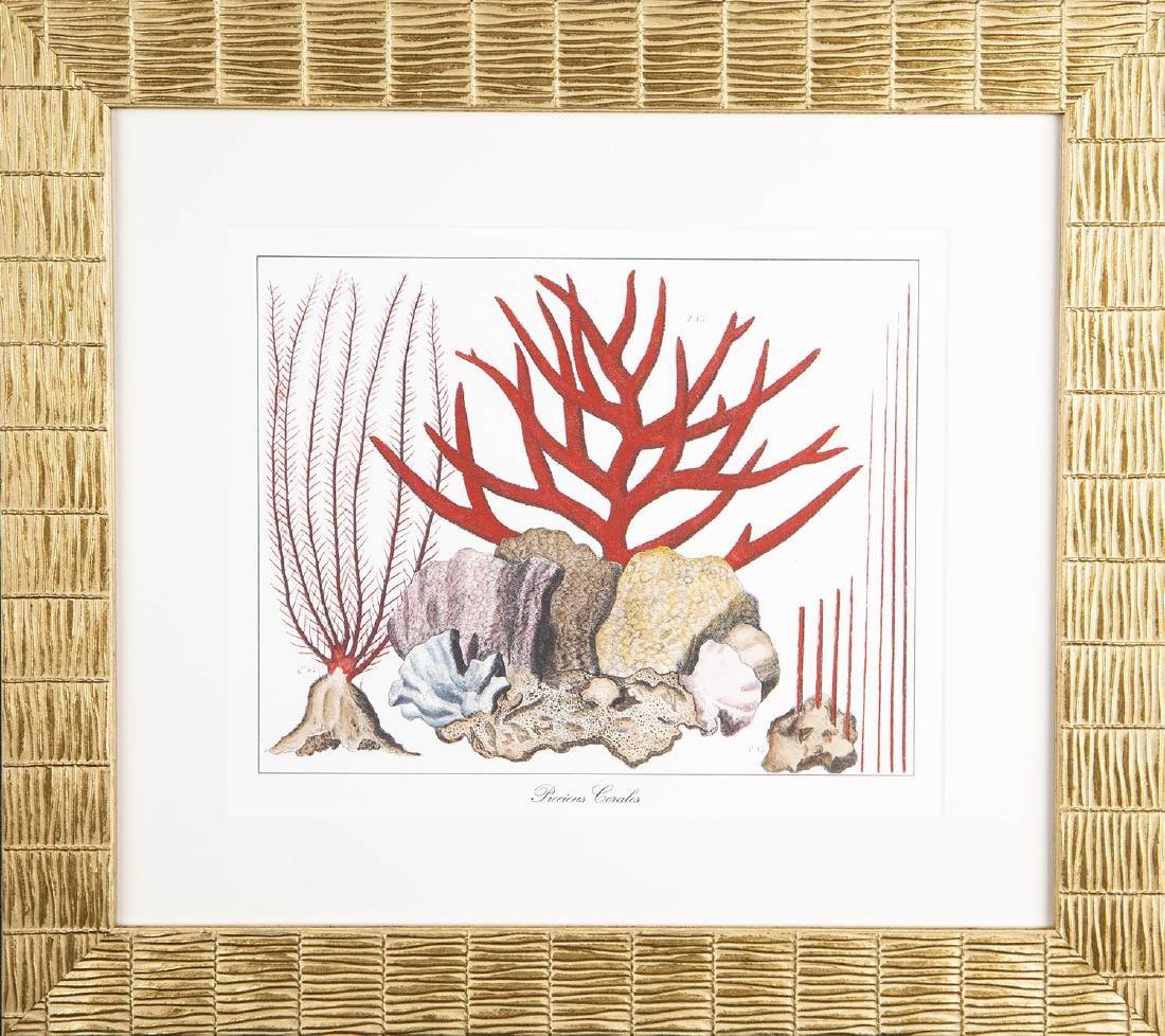 Florentine Work, Precious Coral Etching