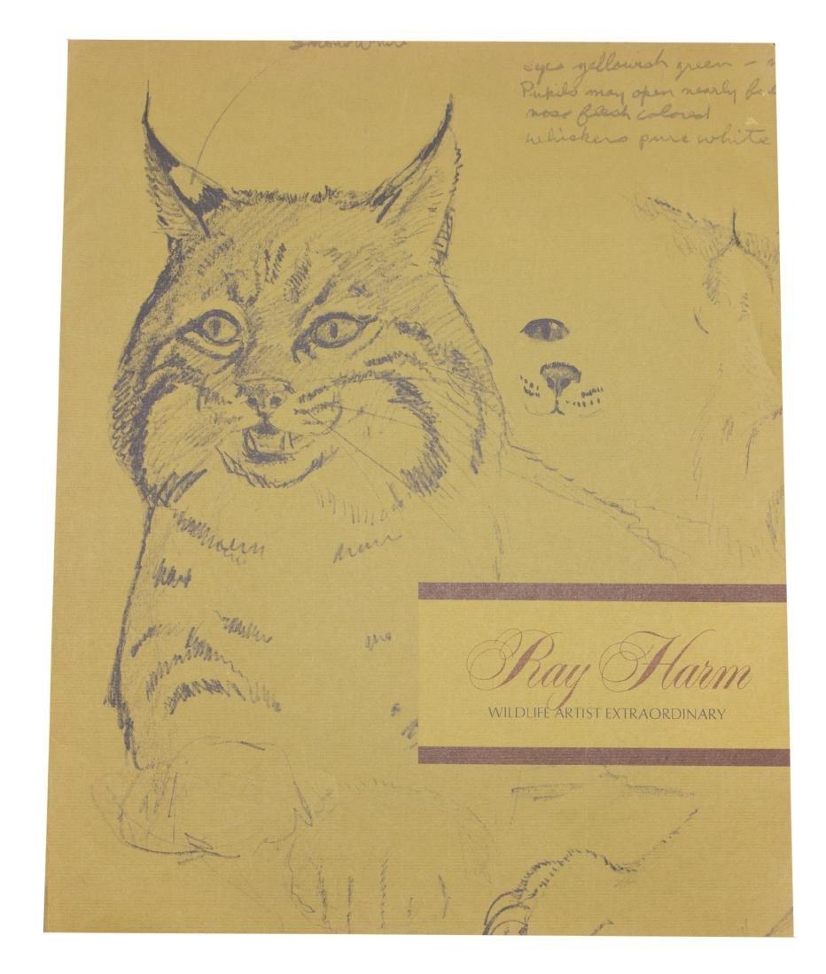 Ray Harm Wildlife Artist Print (Yellow-billed Cuckoo - 2