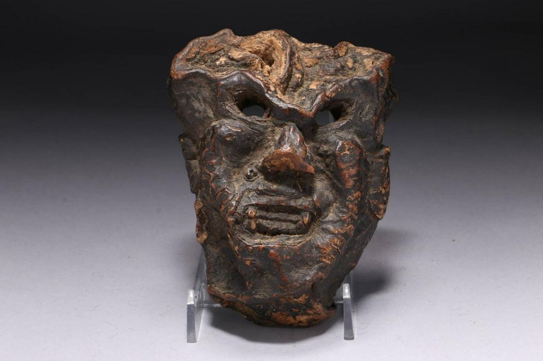Tibetan Fungus Mask
