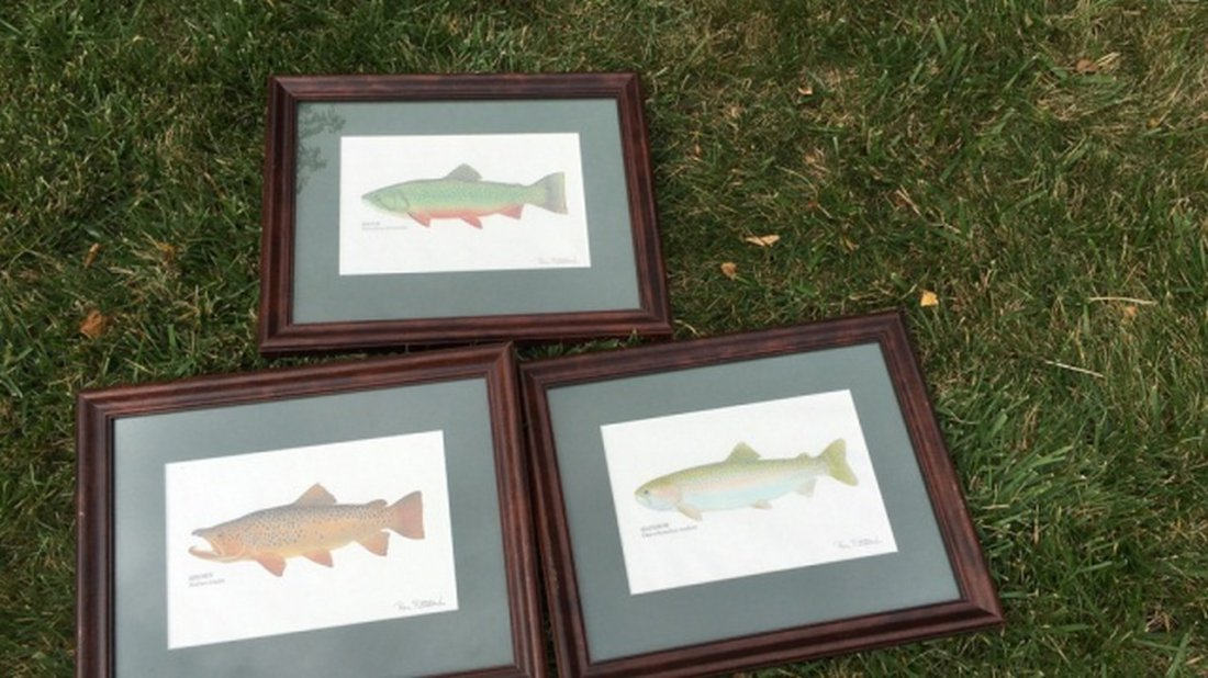 """Lot of 3 Signed """"Ron Pittard"""" Fish Prints"""