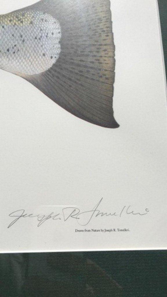 Joe Tomelleri Ltd. Ed. Signed Color Print - 2
