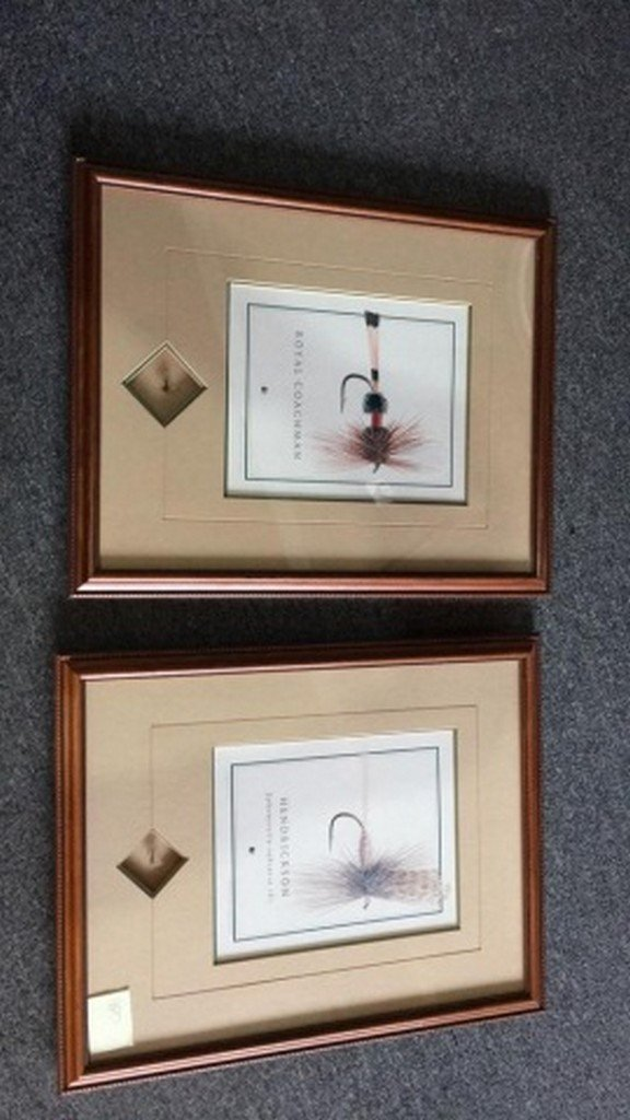 Lot of 2 Framed Trout Fly and Print