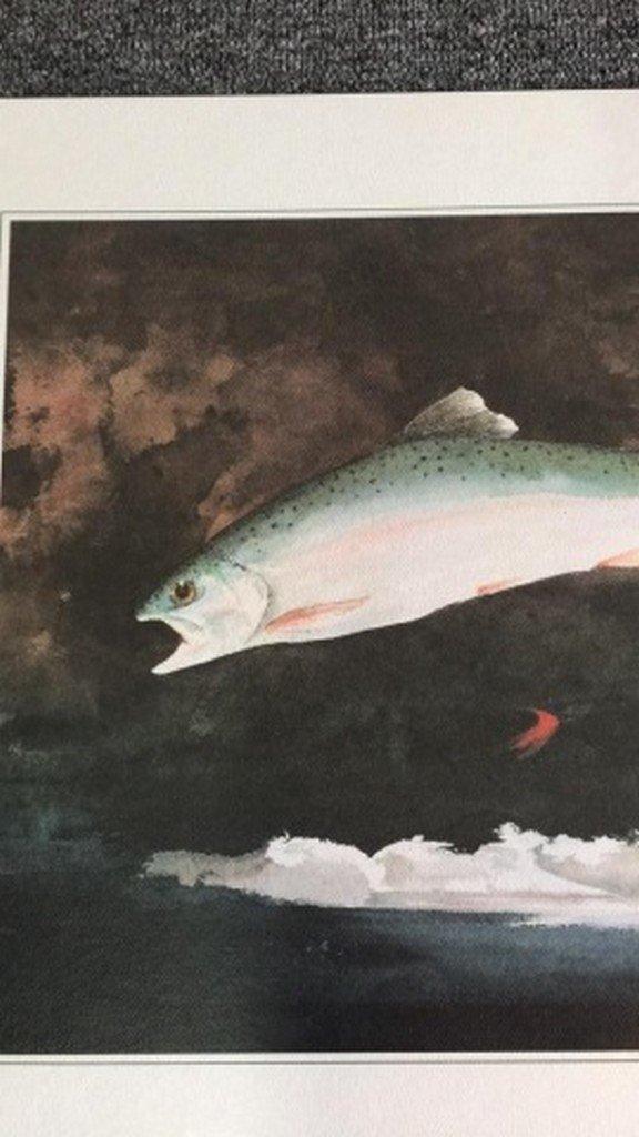 Lot of 2 Fish prints - 4
