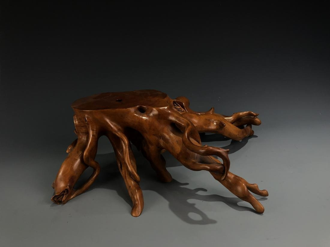 Box Wood Root Stand - 4