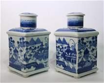 Pair Chinese Export Blue  White Porcelain Tea Bottles