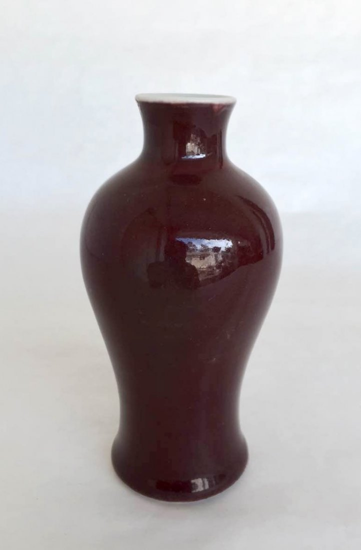 18th C.Chinese Iron Red Glazed Porcelain MeiPing - 2