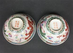 A Pair Of Chinese Famille Rose Bowl With GuangXu Mark