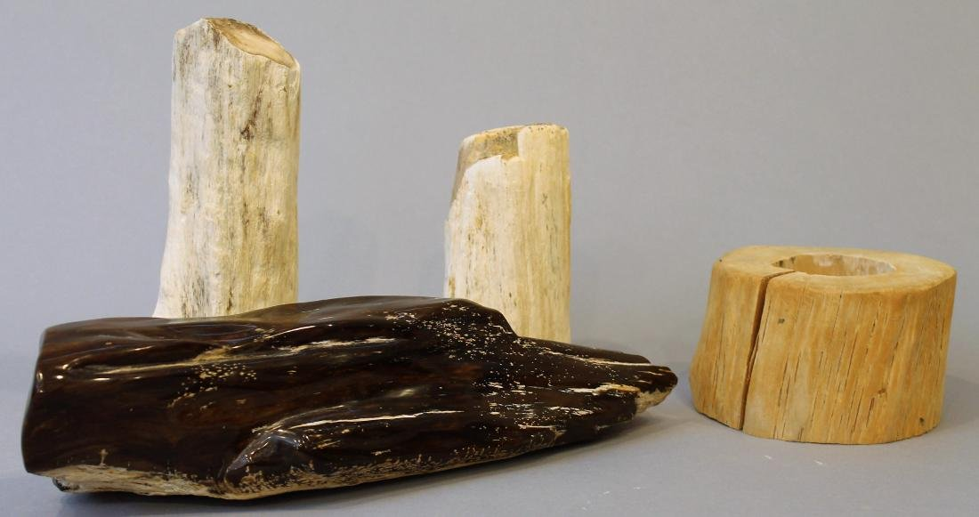 3 Pieces Petrified Wood and 1 Decorative Piece