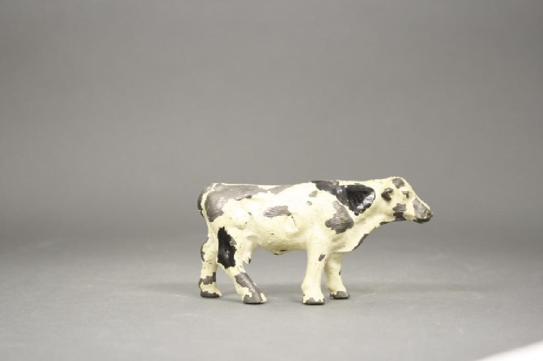 Holstein Cow - 2