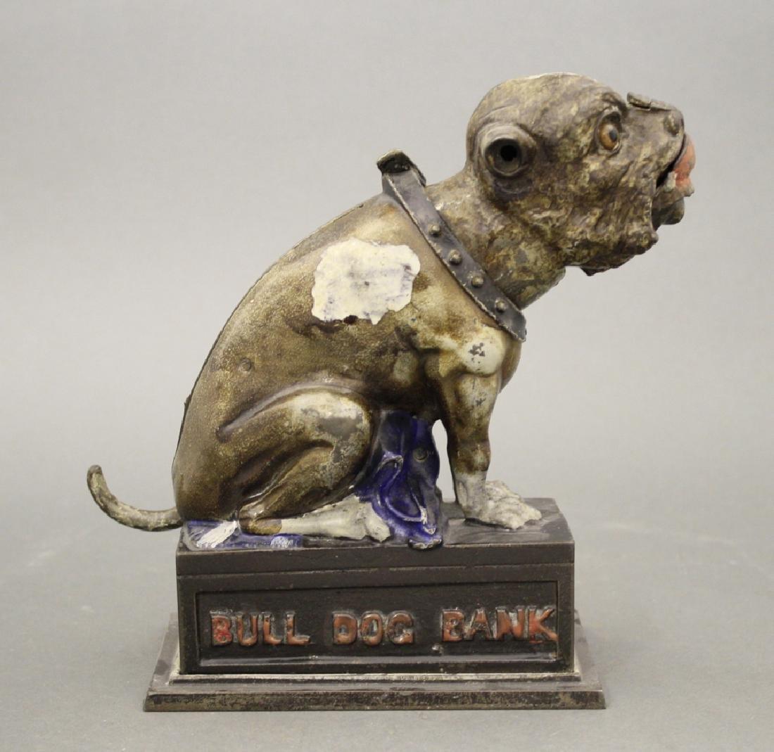 Bulldog, Coin on Nose