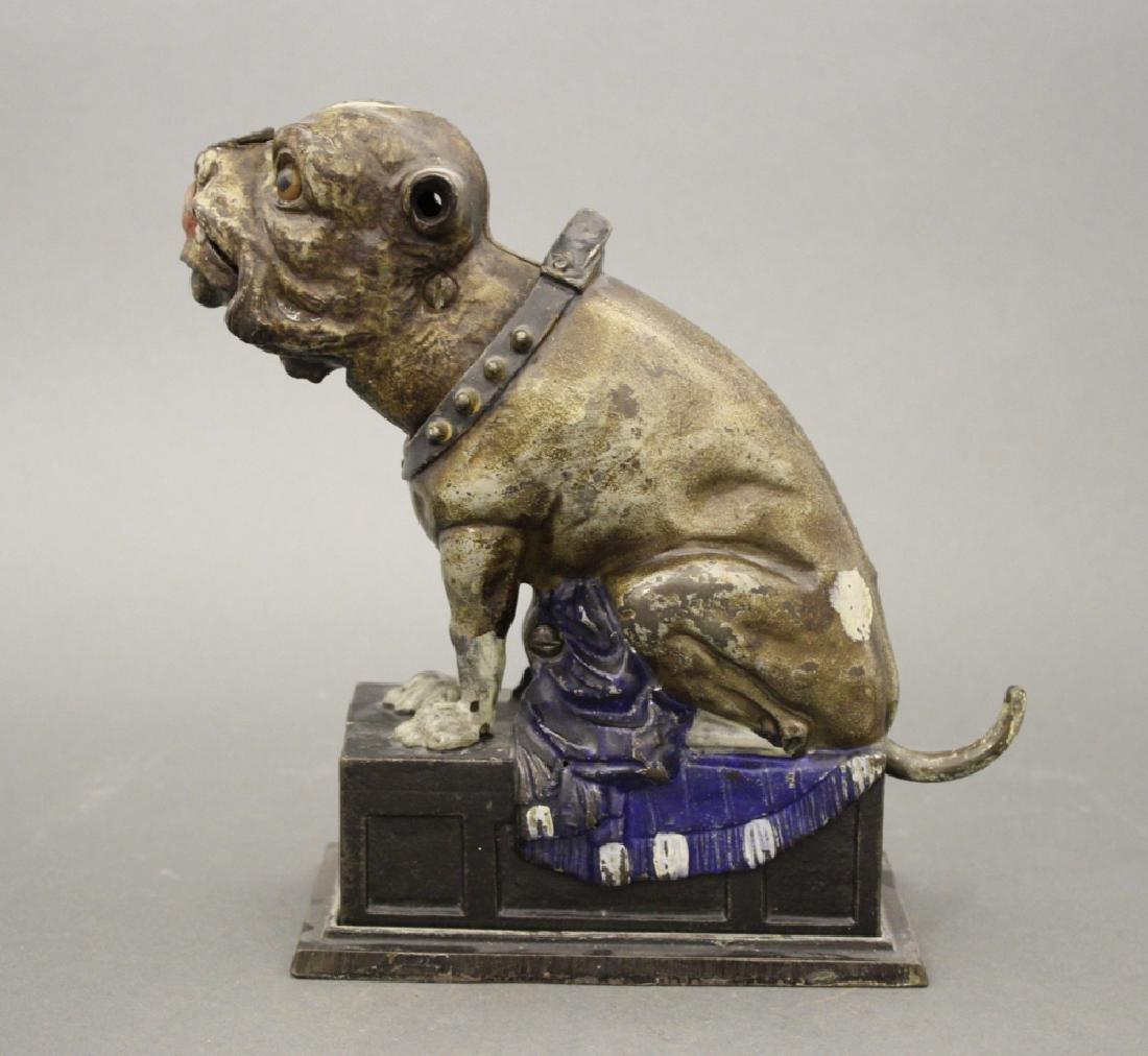 Bulldog, Coin on Nose - 2