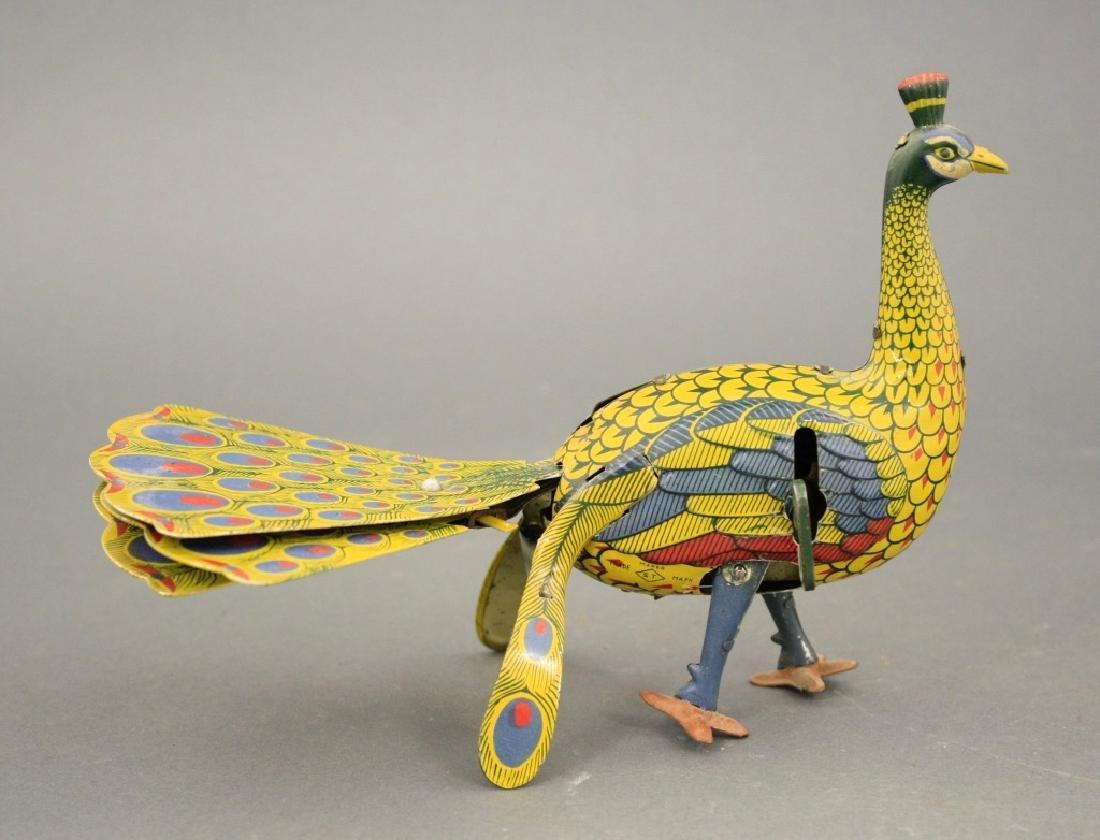 Strutting Peacock - 2
