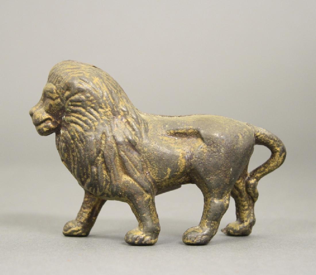 Lion, Small