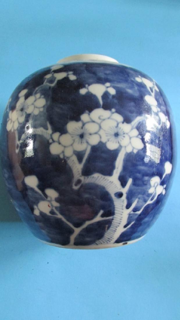 Qing Hawthorne Ginger Jar