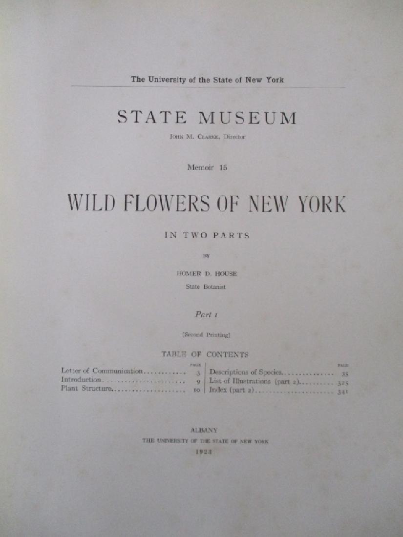 Wild Flowers of New York - 3