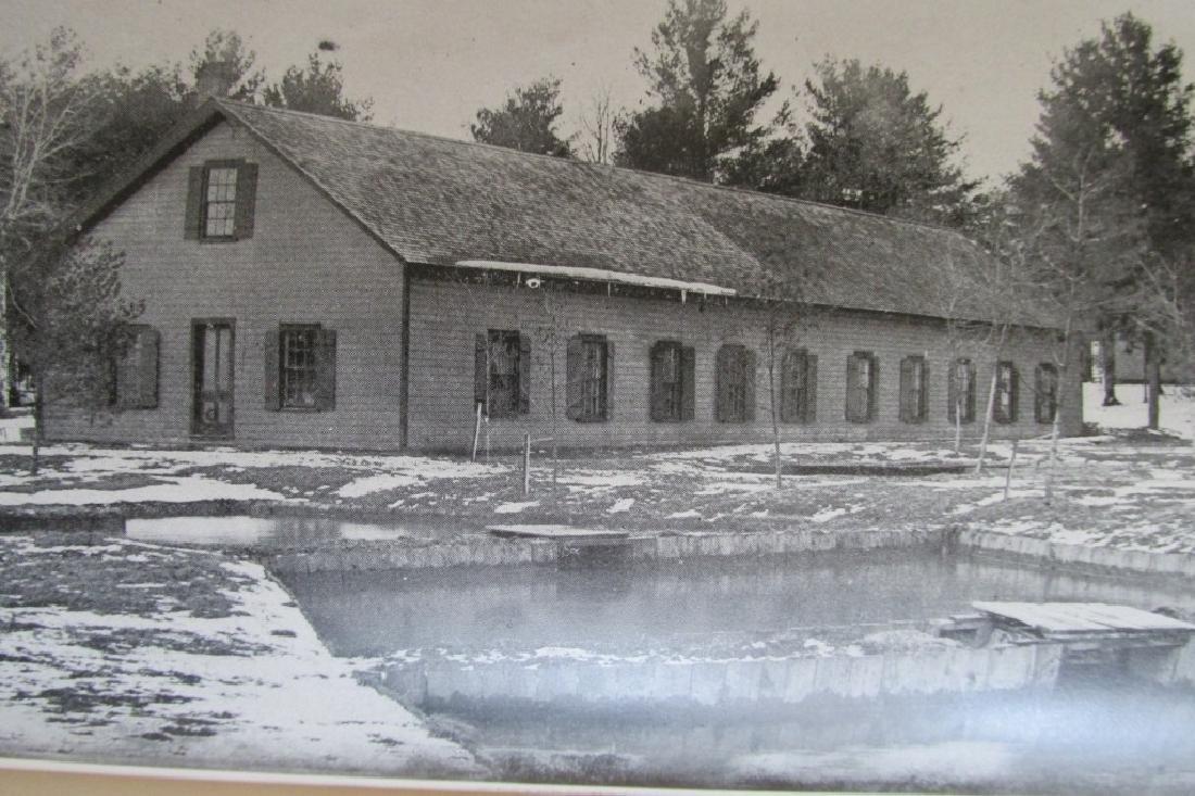 Pennsylvania Fisheries 1895 - 10