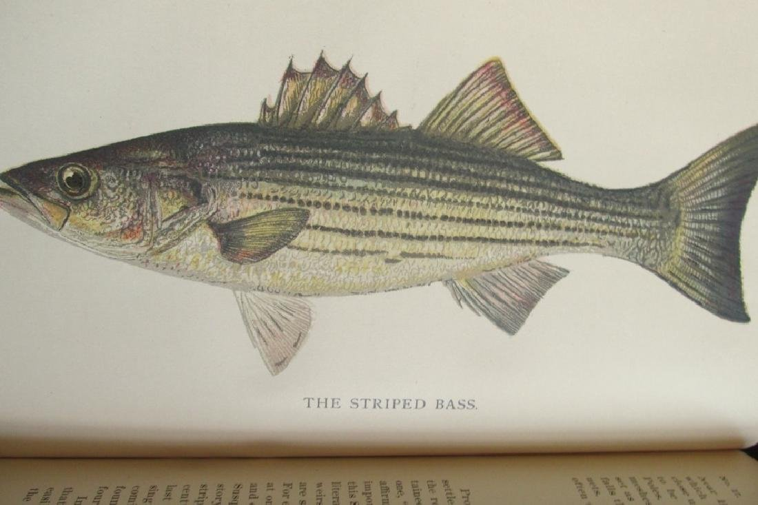 Pennsylvania Fisheries 1895 - 2