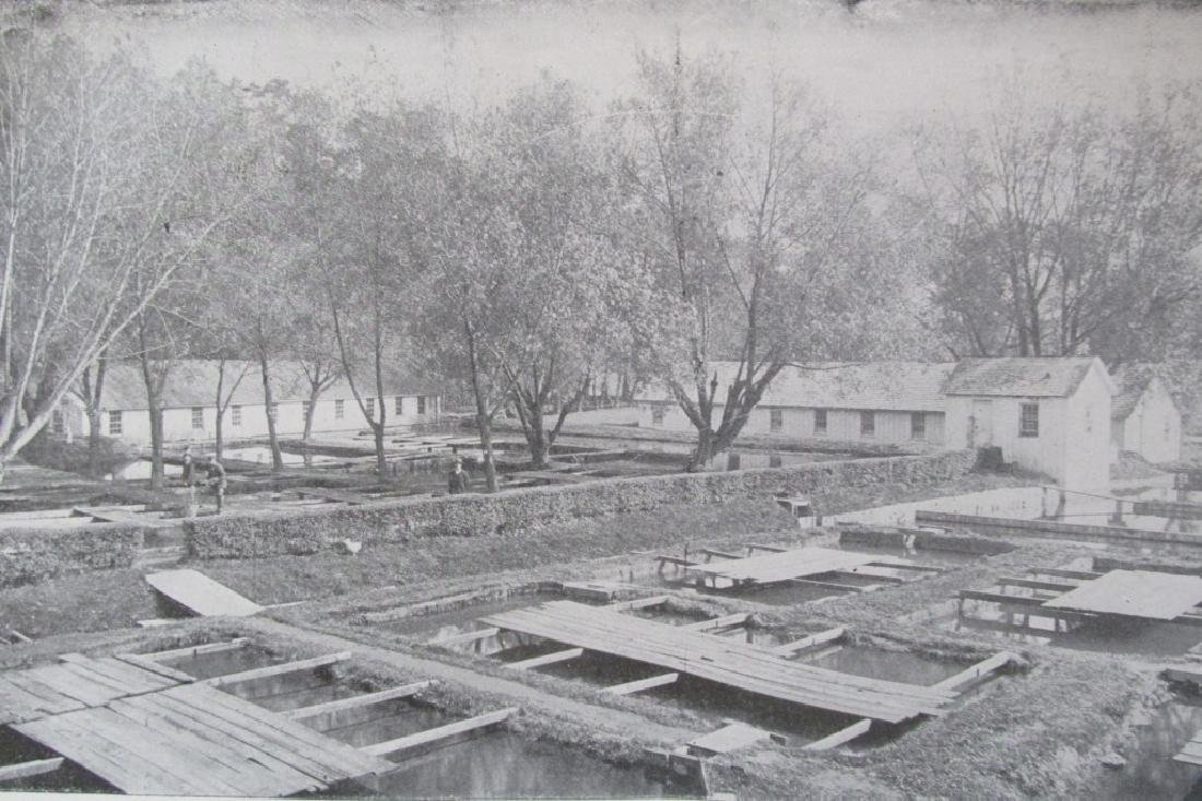 Pennsylvania Fisheries 1895 - 9