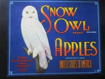 Snow Owl  Apples  - Washington State  Ad