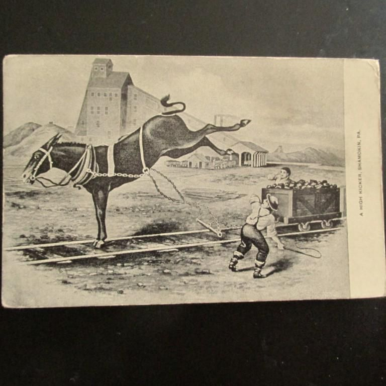A High Kicker Shamokin, PA - Coal Cart & Donkey