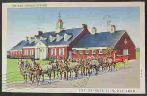 The New Genesee Stables - Horse Team
