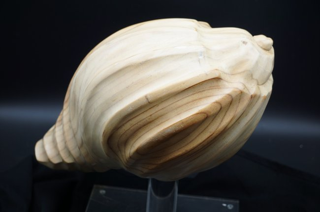 Contemporary Designer Carved Wood Shell