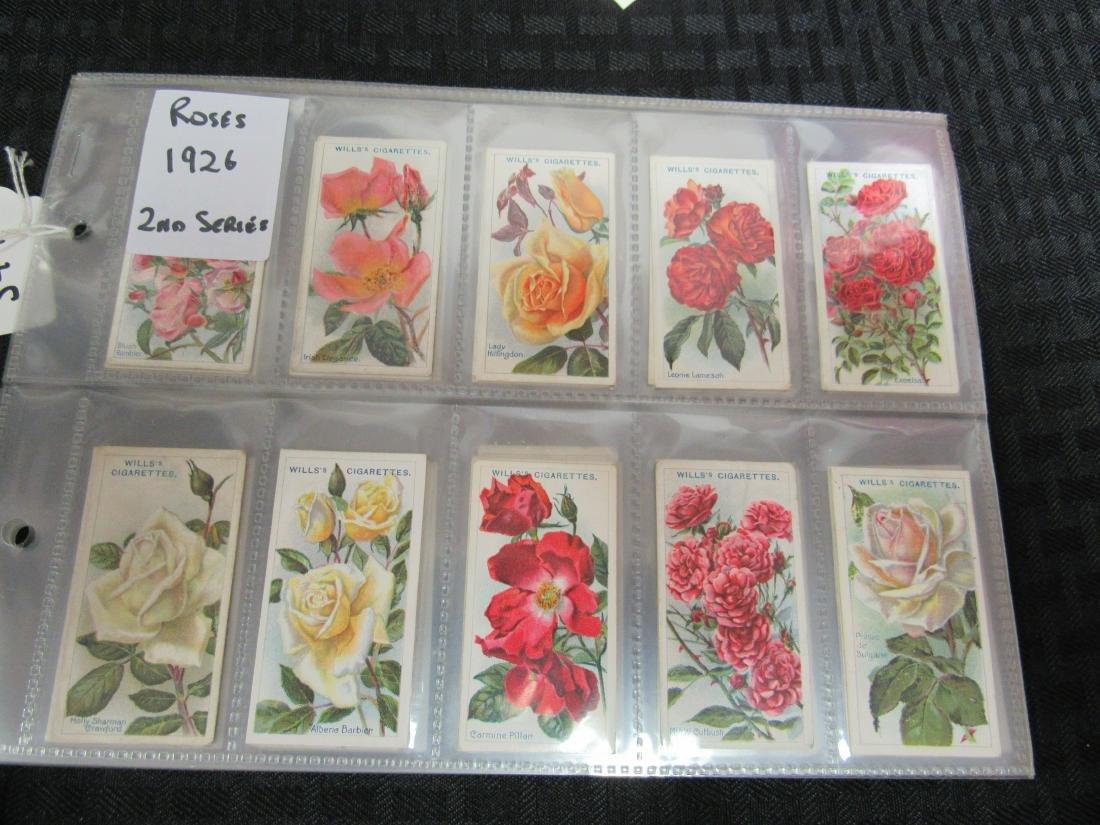 Set of 50 1926 Roses Cigarette Cards