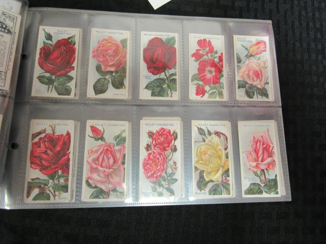 Set of 50 1926 Roses Cigarette Cards - 3