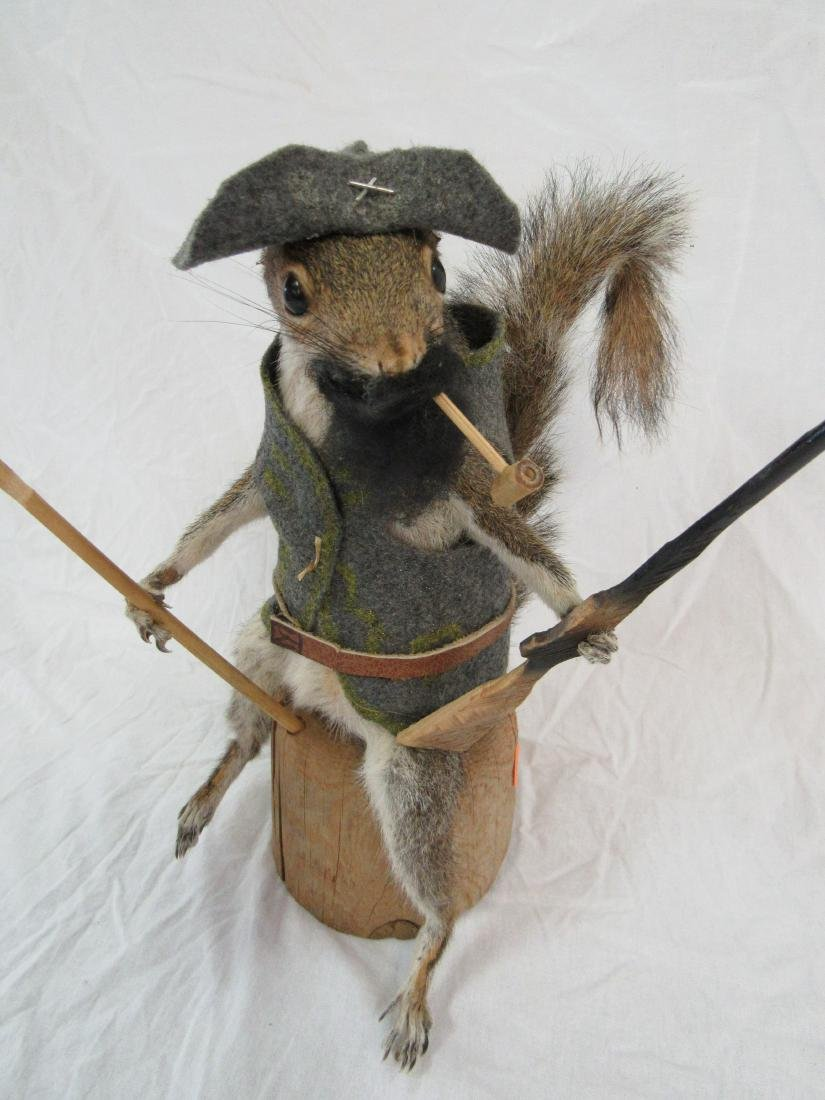 Taxidermy Confederate Squirrel - 2
