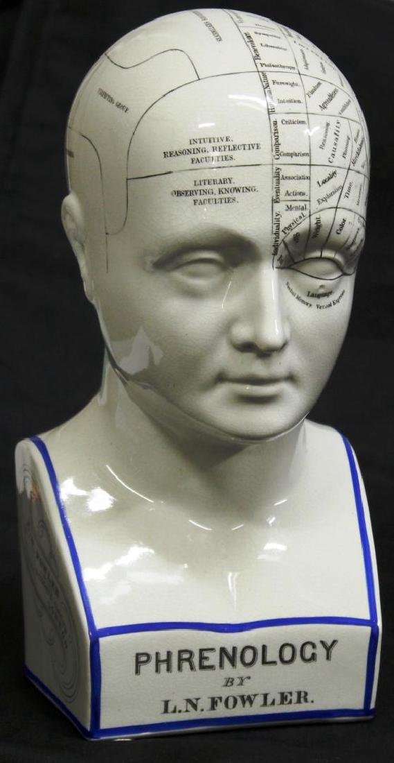 Replica 19th C. English Porcelain Phrenology Head