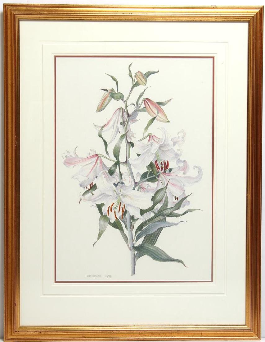 Signed B. Gillespie- Botanical Watercolor - 2
