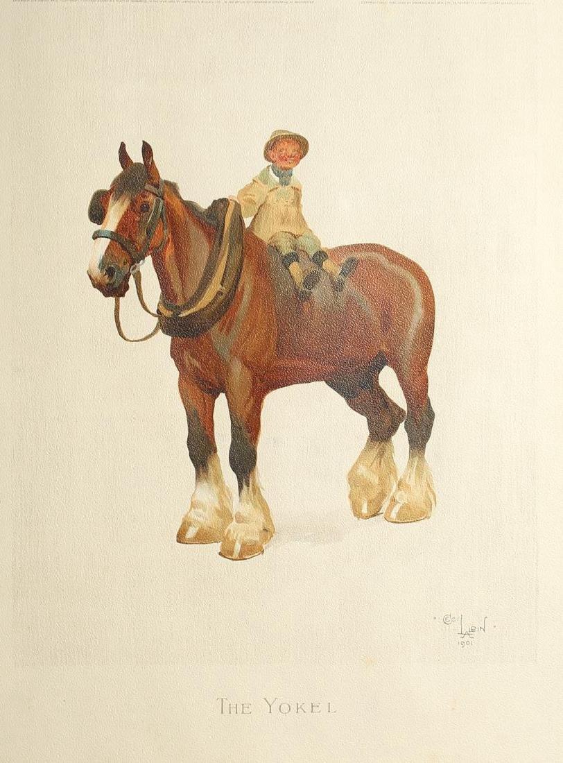Cecil C. W. Aldin RBA (England, 1870-1935)- Prints - 3