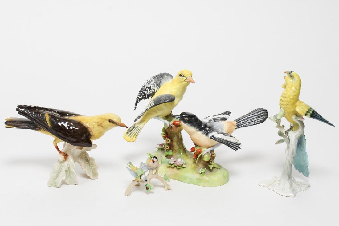Porcelain Bird Figurines, Staffordshire & German