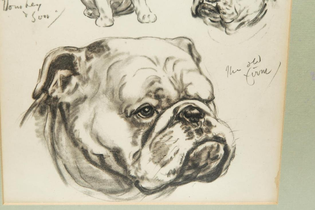 Study of a Bulldog, Dog Portrait Sketches, Print - 3