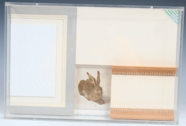 738: Mixed Media with Albrecht Durer Hare Print