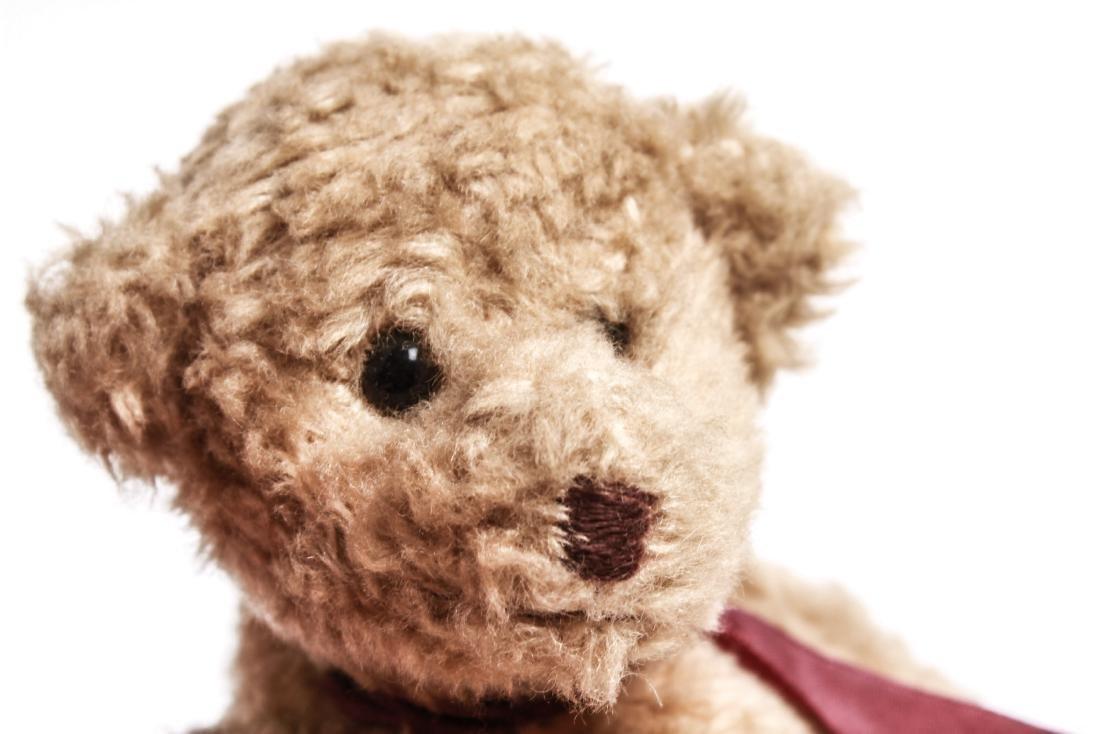 Steiff Manner Teddy Bears Dog Stuffed Animal Toys - 3