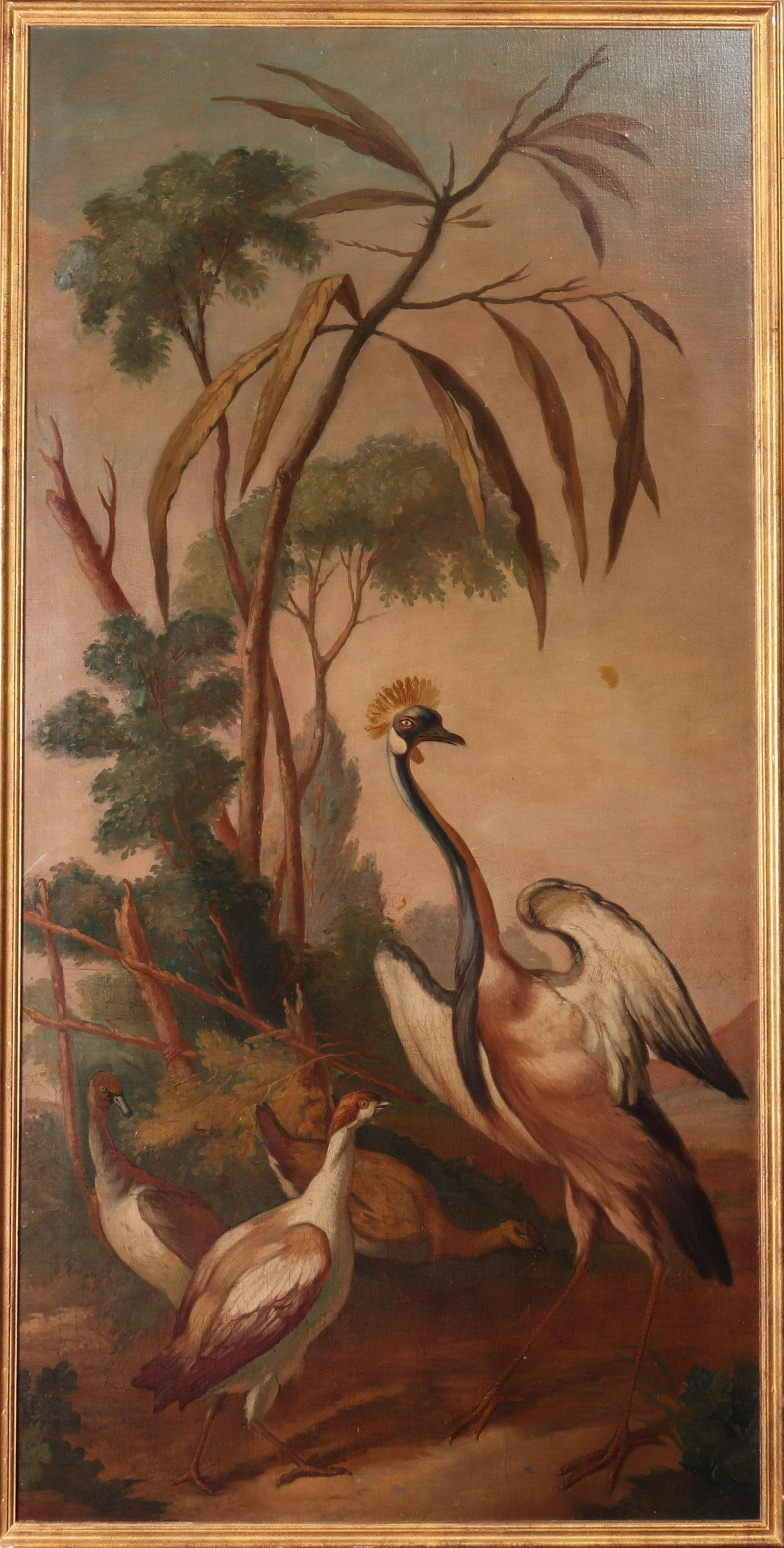 19th Century Exotic Birds Oil on Canvas Wall Panel