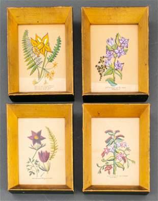 Zwang Botanicals Gouache on Paper, 4 Pcs.