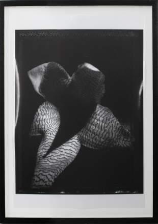 """Leslie Sheryll """"Flower"""" Black & White Photograph"""