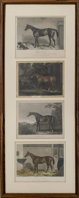 Multiple Artists, Equine Engravings, 4