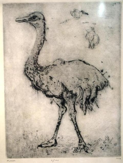 116: Mordecai Moreh Etching of Ostrich 1966