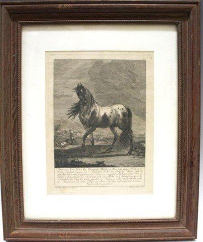 German Engraving of Horse