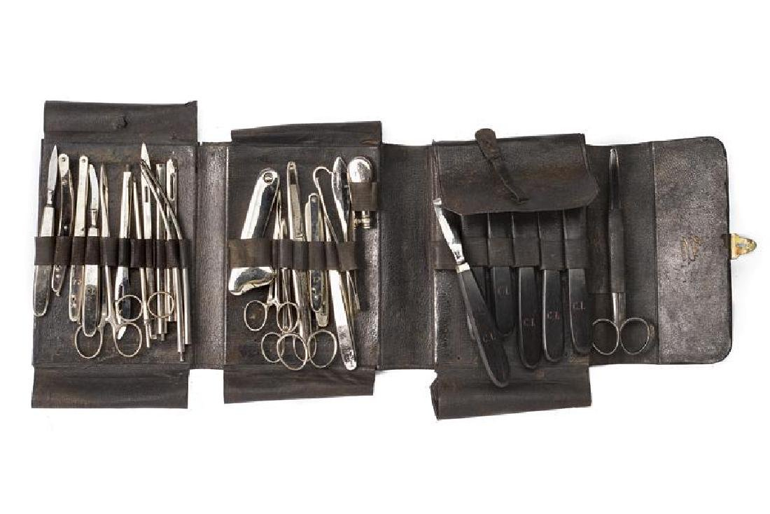 A set of instruments for a veterinary