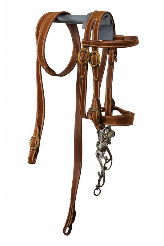 A horse bit with bridle and reins