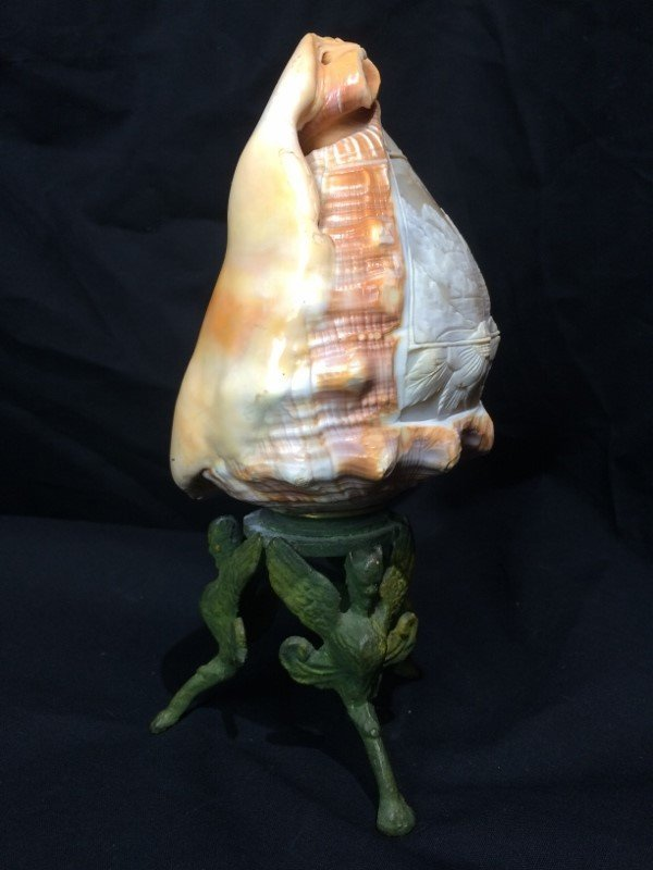 Carved conch shell, scene of Italian coast, circa 1900 - 6