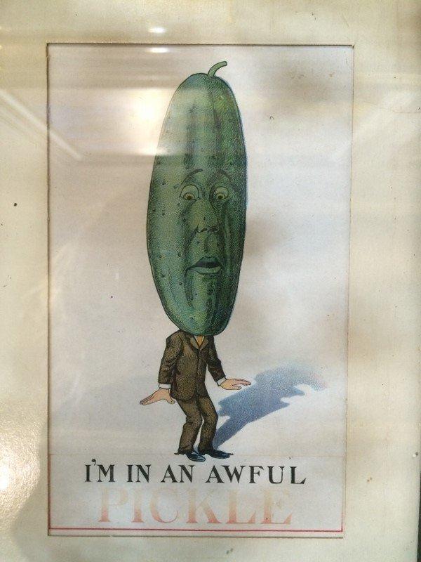 Framed 1912 Pickle postcard - 2
