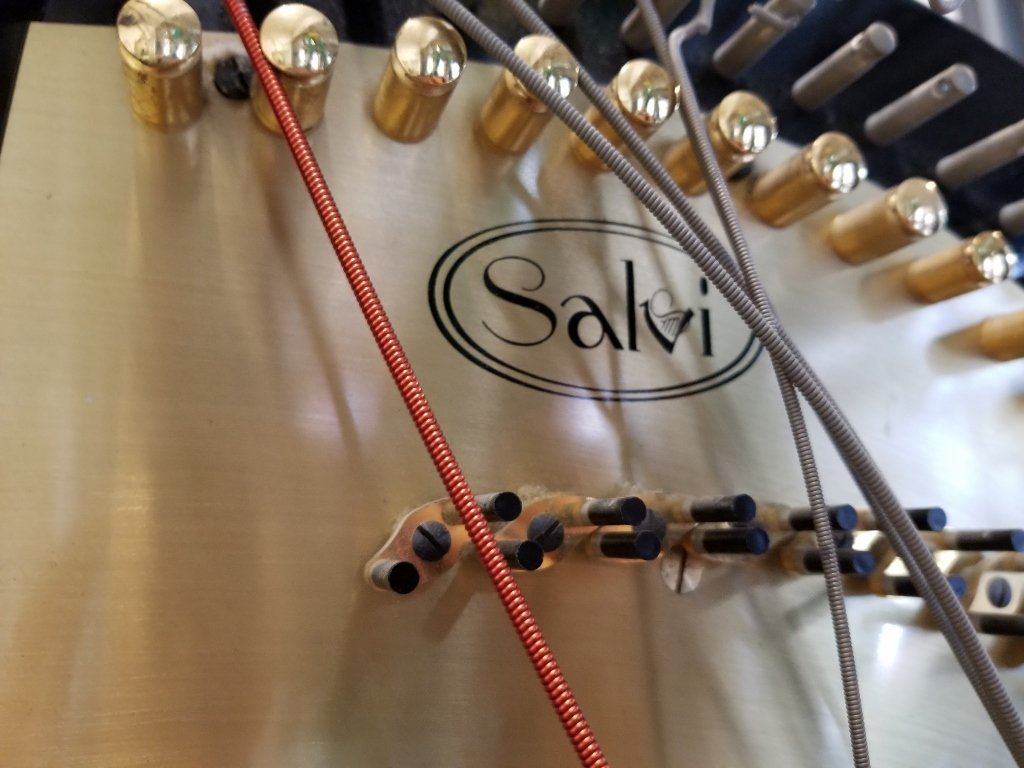 "Large black harp marked ""Salvi"" - 4"